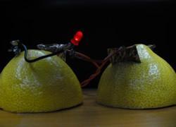 Lemon Battery Potato Battery
