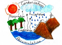 Water cycle diagram250 180g water cycle diagram ccuart Choice Image