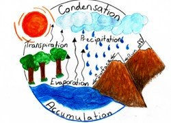 Water cycle water cycle diagram ccuart Image collections
